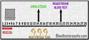 progesterone-day-21 chart